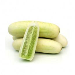 Cucumber (White)