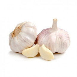 Garlic (gavran)