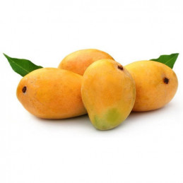 Mango (Hapus - Gramoday)