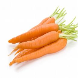 Carrot (orange)